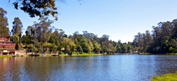 Coorg - Mysore - Ooty - Kodaikanal Tour Package from Mangalore